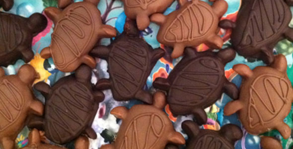 Caramel Turtle Party Favors